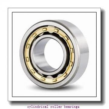 3.74 Inch | 95 Millimeter x 6.693 Inch | 170 Millimeter x 1.26 Inch | 32 Millimeter  Timken NU219EMAC3 Cylindrical Roller Bearings