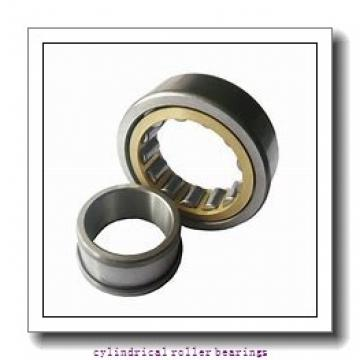4.724 Inch | 120 Millimeter x 8.465 Inch | 215 Millimeter x 2.283 Inch | 58 Millimeter  Timken NJ2224EMA Cylindrical Roller Bearings