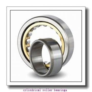Timken T 6137 A Cylindrical Roller Bearings