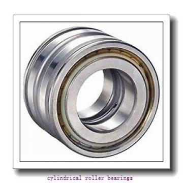 4.724 Inch | 120 Millimeter x 8.465 Inch | 215 Millimeter x 2.283 Inch | 58 Millimeter  Timken NU2224EMA Cylindrical Roller Bearings